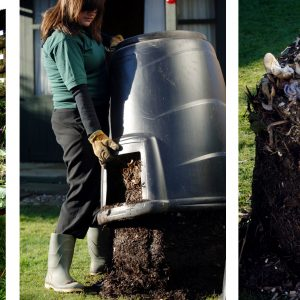 Tips on Composting